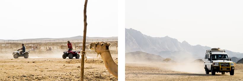 Quad & Jeep fahren durch die Weiten der arabischen Wüste