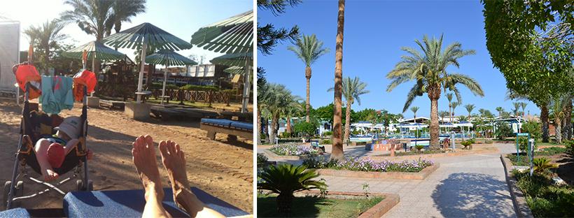 Erste Eindrücke im Ghazala Gardens in Sharm El Sheikh